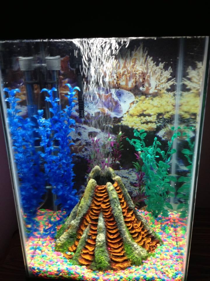 Under the sea melinda in dayton for Aquarium volcano decoration